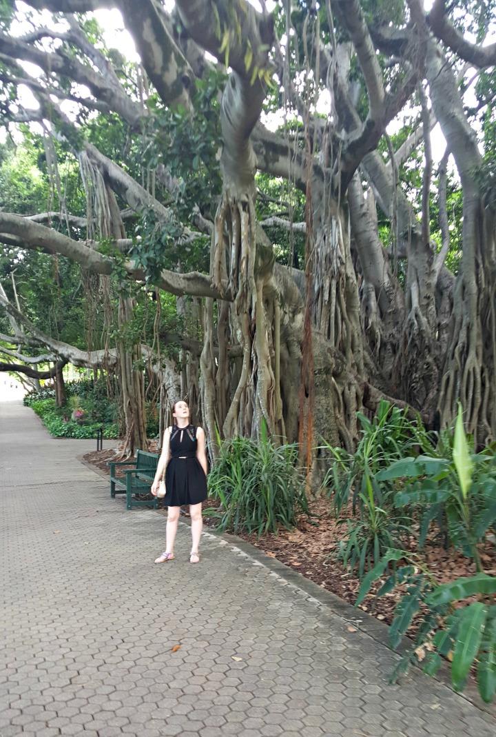 Botanical Garden5