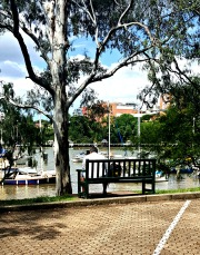 Brisbane River, Botanical Garden