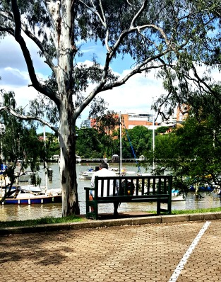Brisbane River, Botanical Garden